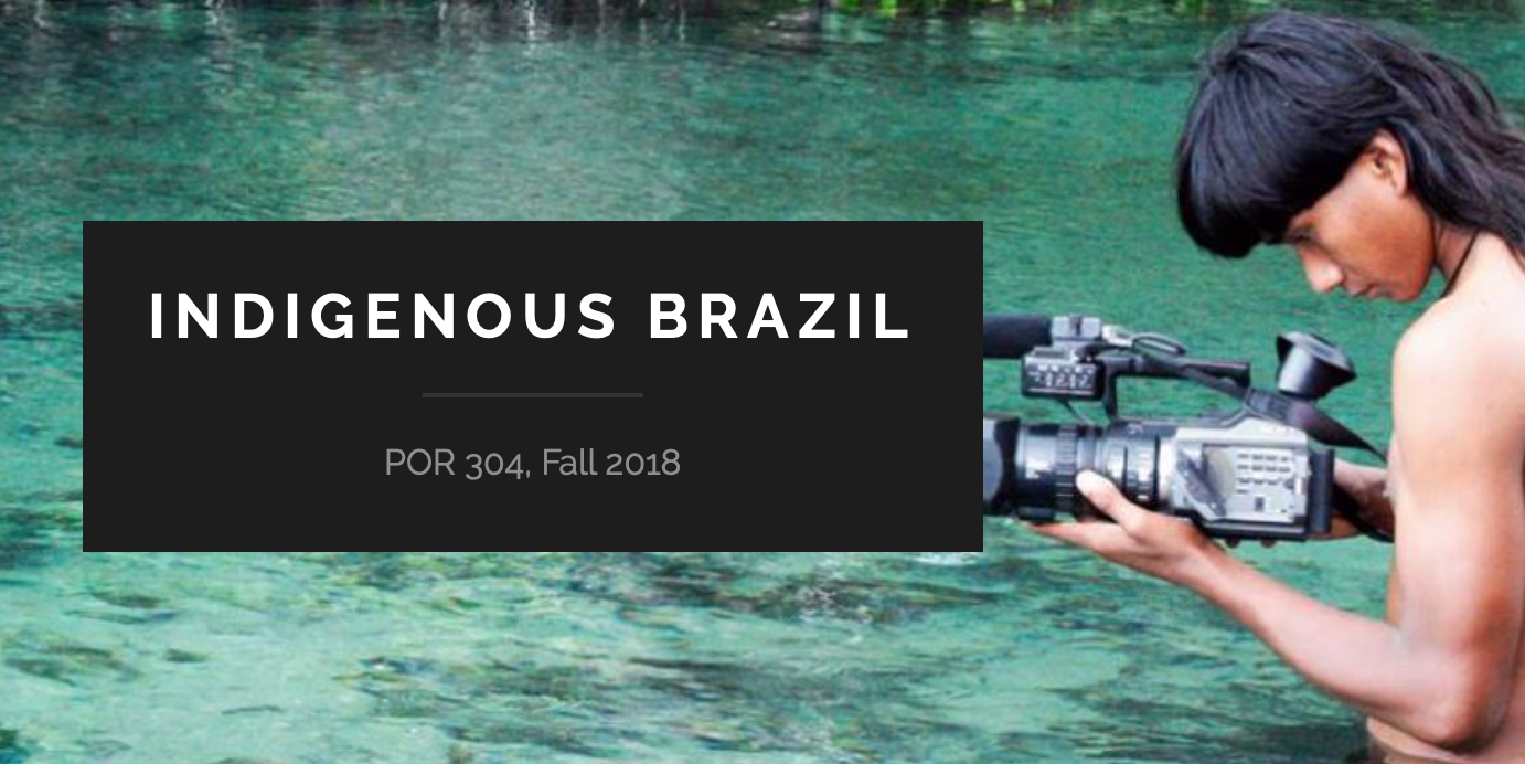 Indigenous Brazil Website